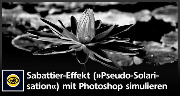 Wie Sie in Photoshop einen Sabattier-Effekt »Pseudo-Solarisation« in Fotos simulieren