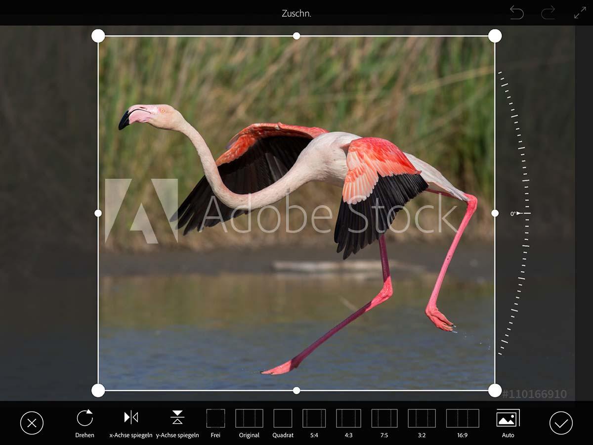 Unterwegs zeichnen und illustrieren - Teil 1: Fotovorlagen mit Adobe ...